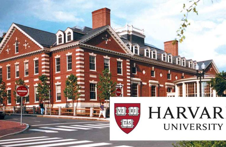 10 Free Online Technical Courses You Can Do From Harvard University